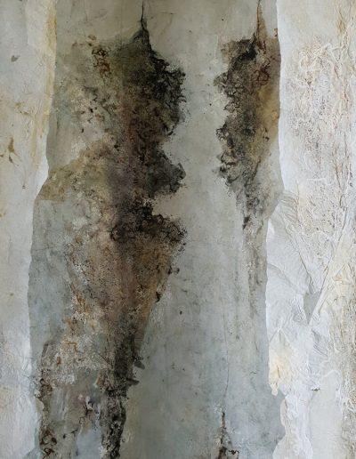 Sea Wrack Fragment.
