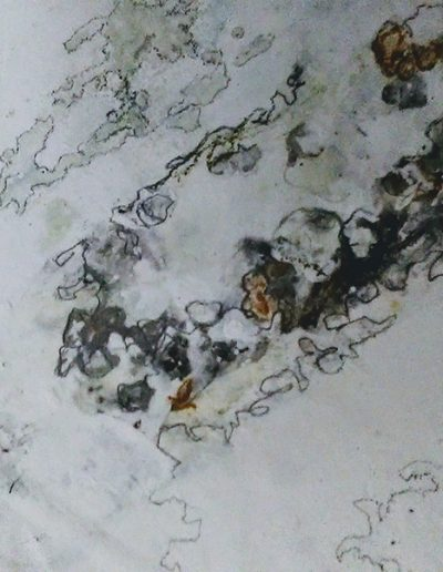 Sea Drawing Panel. 30x20cm. Plaster and pigment.